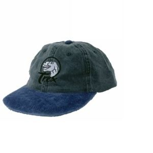 Other - T-Rex youth hat
